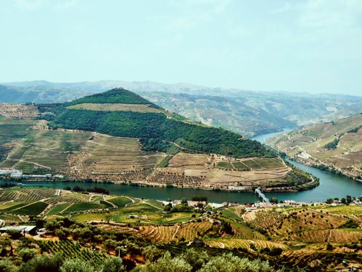 Douro Tour - Wine & Tradition