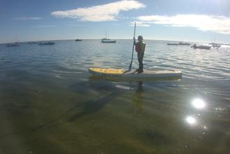 Explore Ria Formosa by SUP