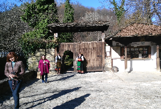 Skip the Line: Tour in Open Air Ethnographic Museum ETAR + ticket - Ticket + guiding