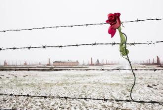 Auschwitz-Birkenau Memorial and Museum- RUSSIAN Guided Tour