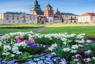 Wawel Castle, Cathedral and Wieliczka Salt Mine Guided Tour with Lunch