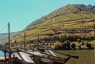 Douro Relaxation Tour